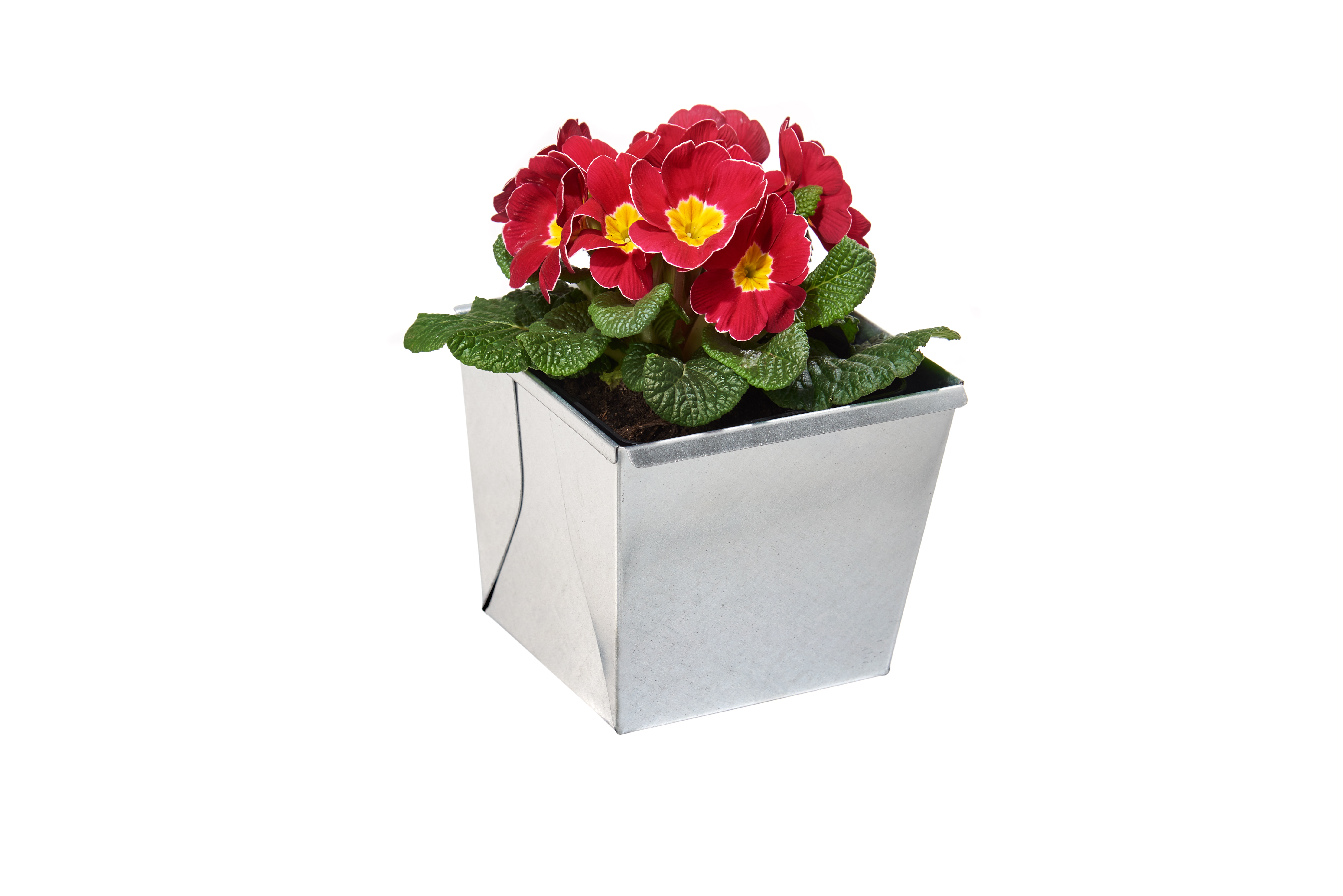 gabioka flowerbox small verzinkt